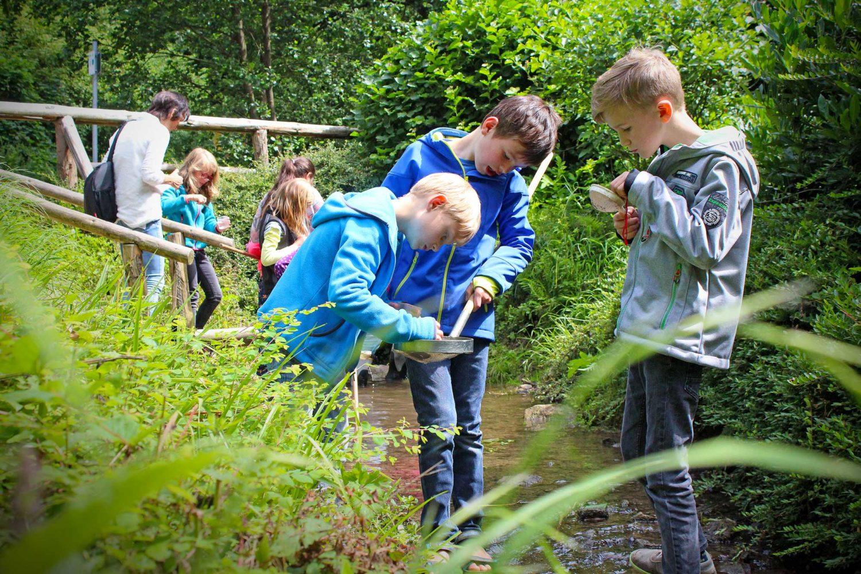 Umweltbildung für Schulen Musem am Schölerberg