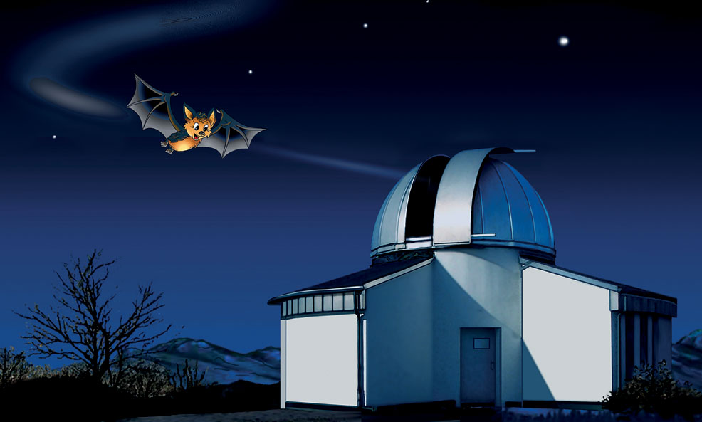 Ein Sternbild für Flappi - Planetarium Osnabrück